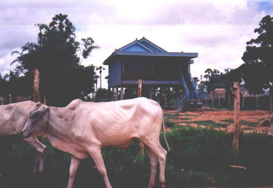 villagelg